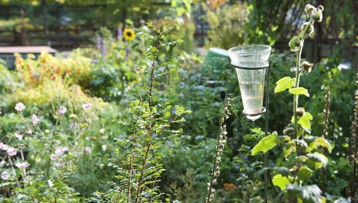 instrument-used-measure-rainfall