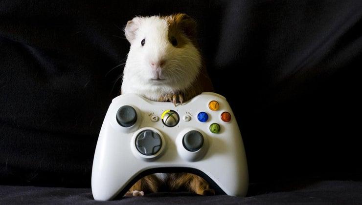 advantages-disadvantages-online-gaming