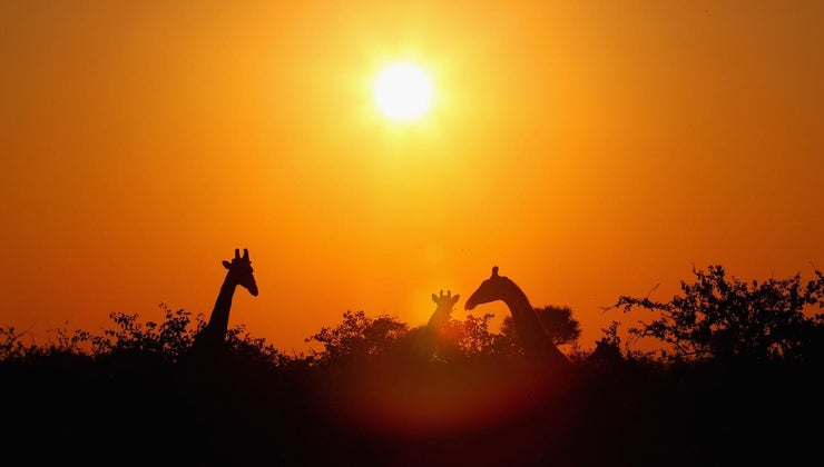 africa-referred-dark-continent