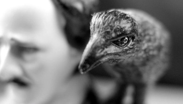 allusions-present-raven-edgar-allen-poe