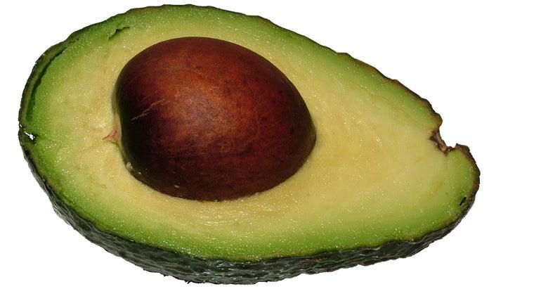 avocado-pits-poisonous