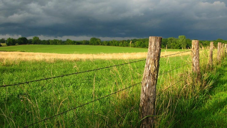 big-35-acres
