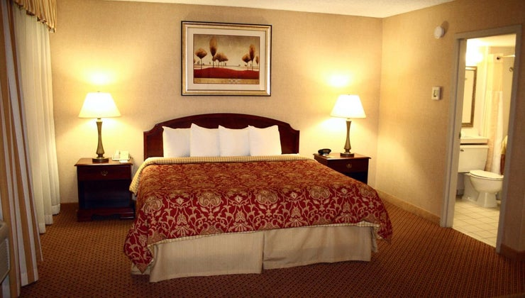 biggest-size-bed
