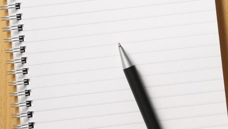 blank-slate-theory