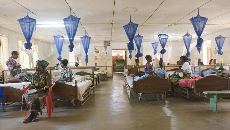 body-systems-affected-malaria