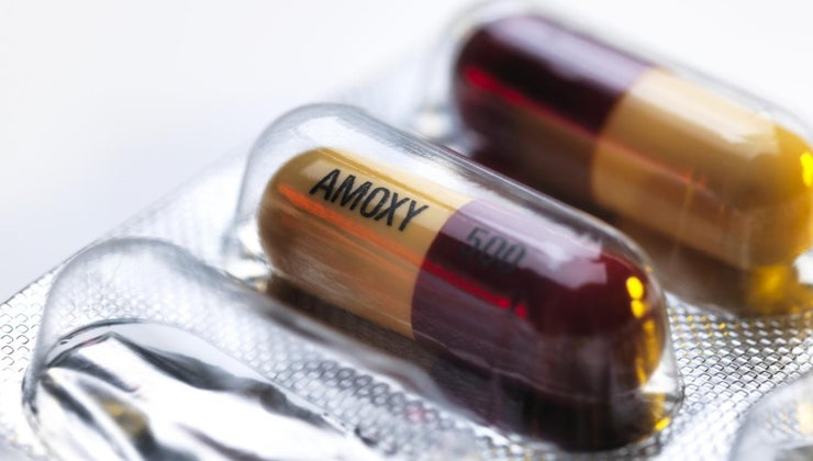 can-amoxicillin-over-counter