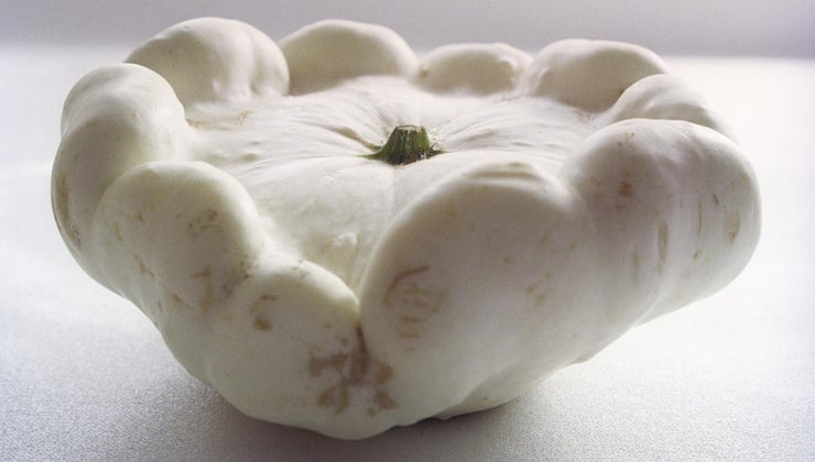 can-cook-white-squash