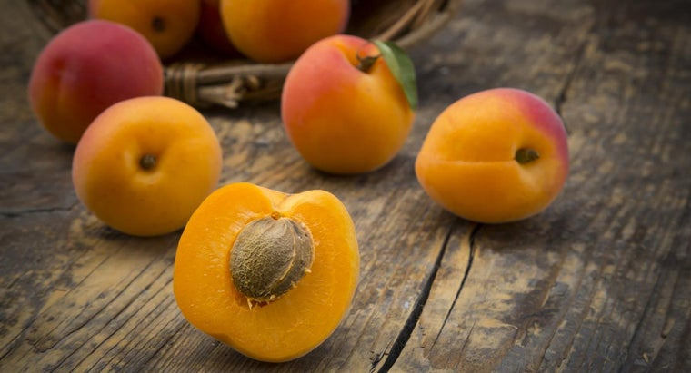 can-freeze-apricots