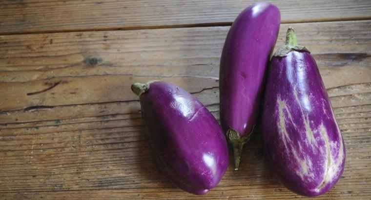 can-freeze-eggplant
