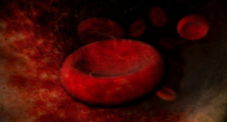 cause-enlarged-red-blood-cells