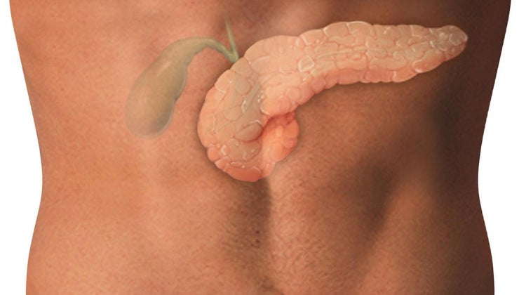 causes-distended-gallbladder