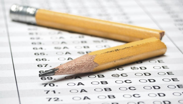 check-students-grades-online