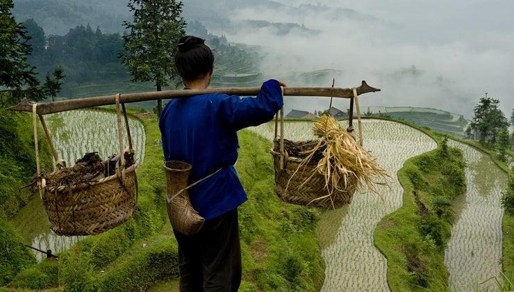 natural-resources-china