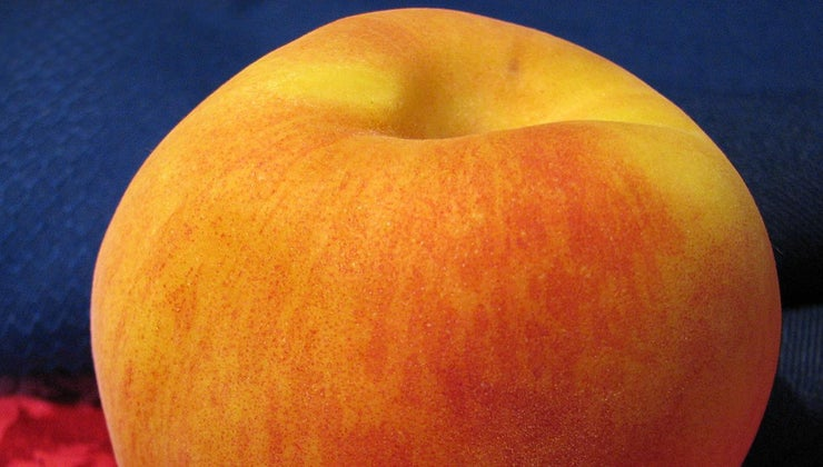 colors-mixed-together-make-peach
