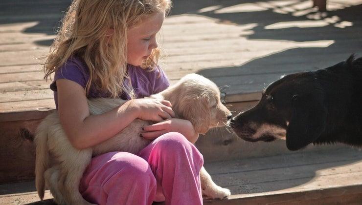 cute-names-girl-puppy