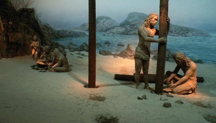 did-cavemen-survive