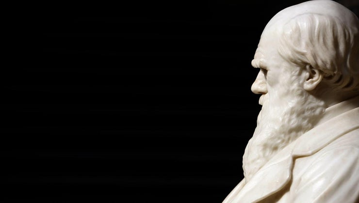 did-charles-darwin-cause-controversy