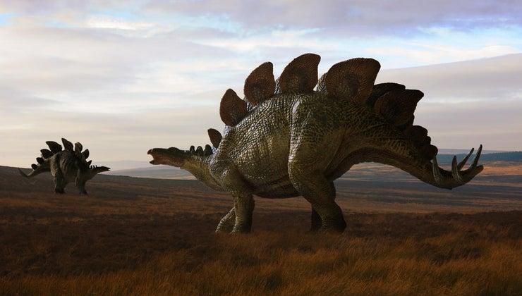 did-dinosaurs-roam-earth