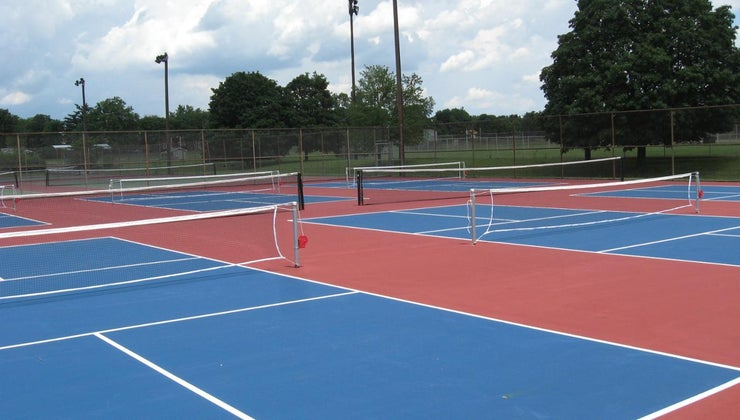 did-pickleball-its-name