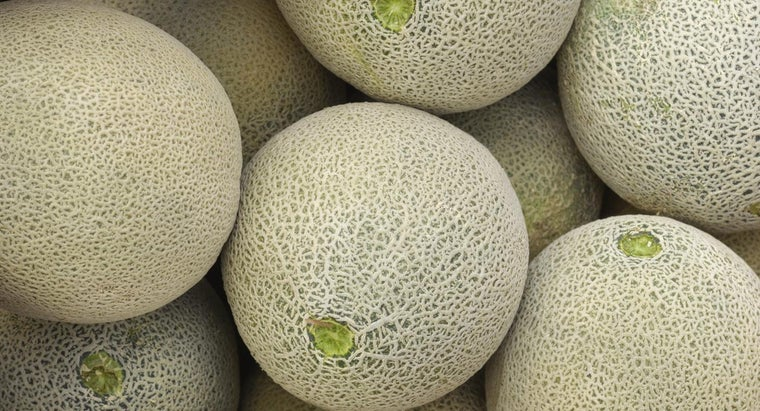 difference-between-cantaloupe-muskmelon