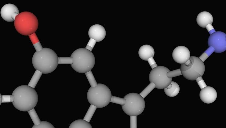 difference-between-dopamine-serotonin