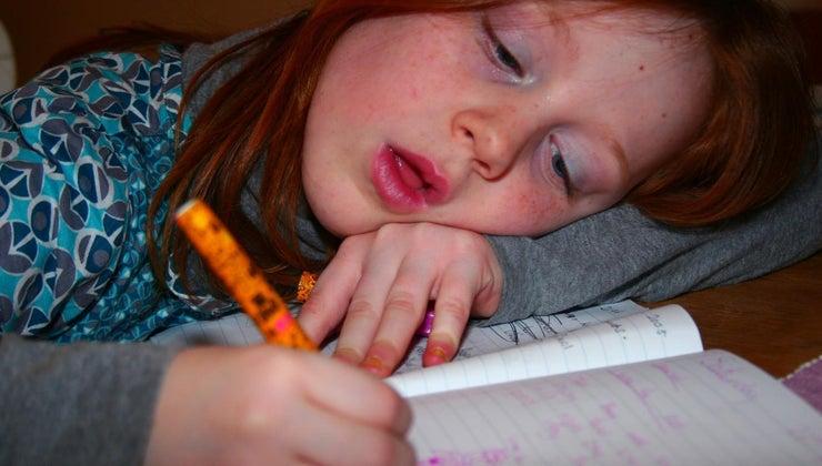 disadvantages-homework