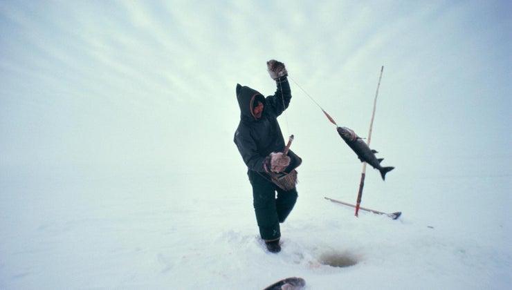 eskimos-eat
