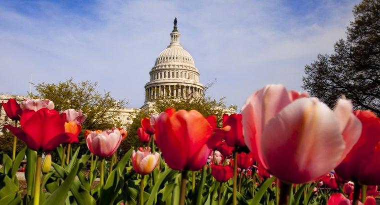five-non-legislative-powers-congress