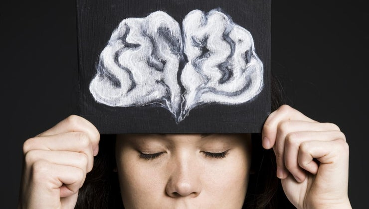 function-brain-s-frontal-lobe