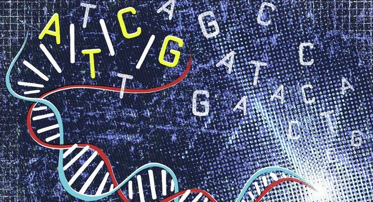 genes-located