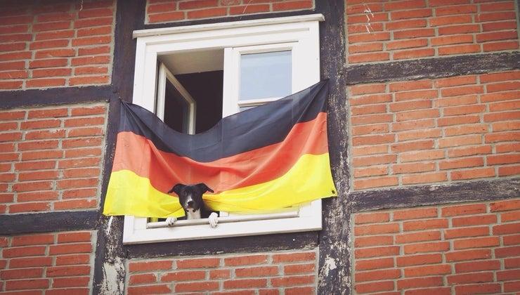 german-flag-represent