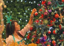 What Is the History of Christmas Trees?
