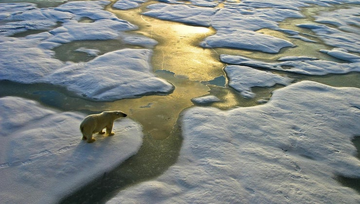 global-warming-occur