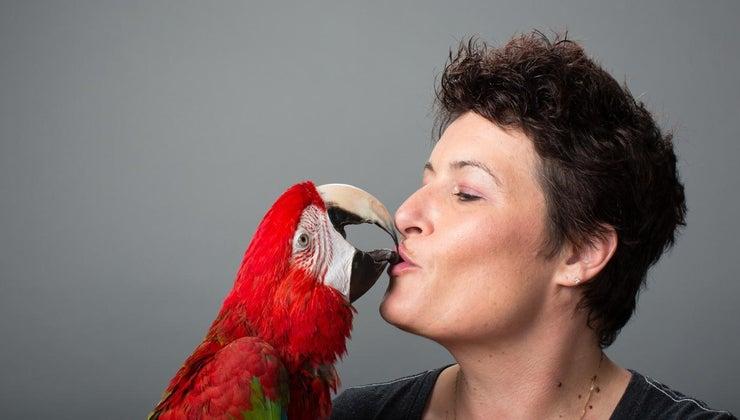 good-names-pet-birds