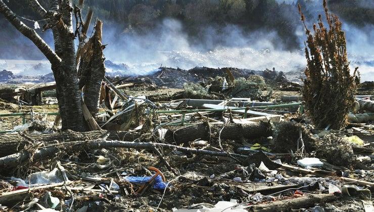 habitat-destruction