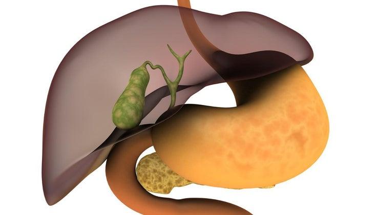 heterogeneous-liver