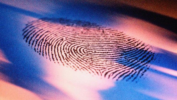 history-fingerprinting