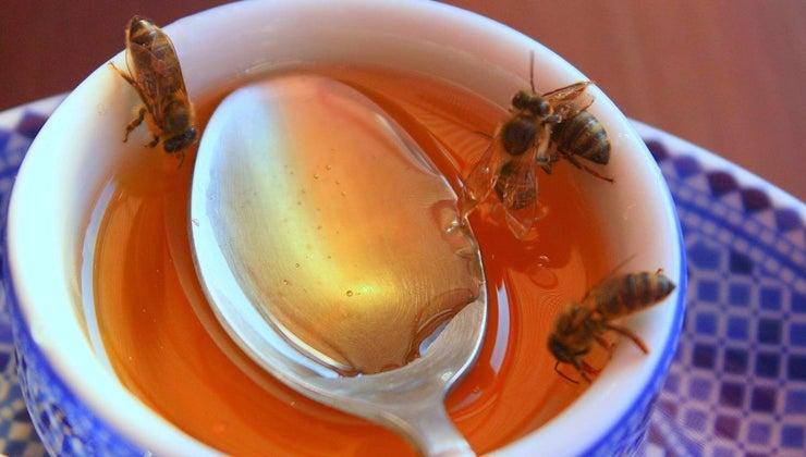 honey-world