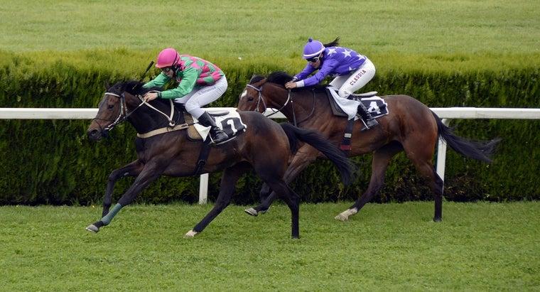 Horse Racing 1577292 1280