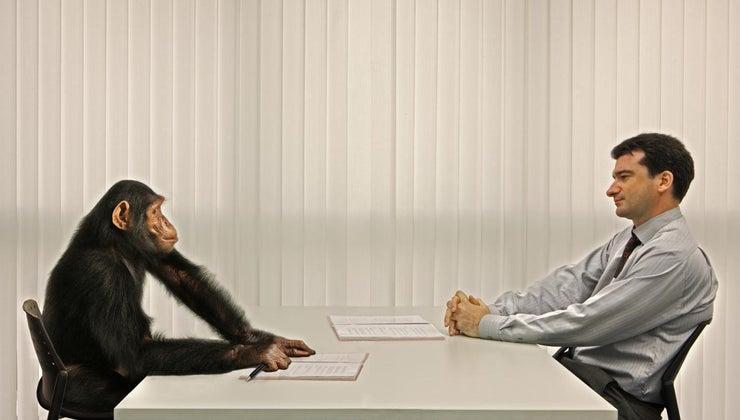 way-justify-hiring-additional-staff