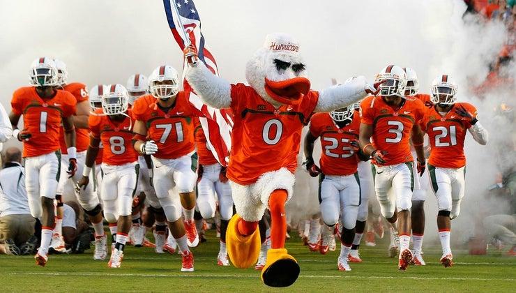 kind-bird-miami-hurricanes-mascot