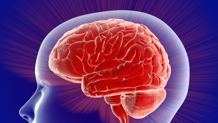 left-side-brain-control