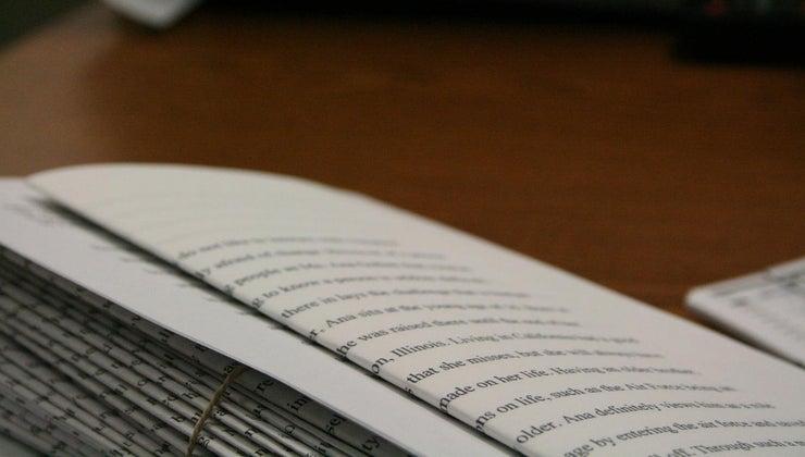long-500-word-essay