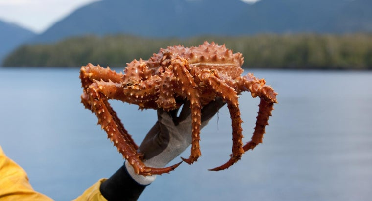 long-alaskan-king-crab-season