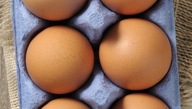 long-eggs-stay-good
