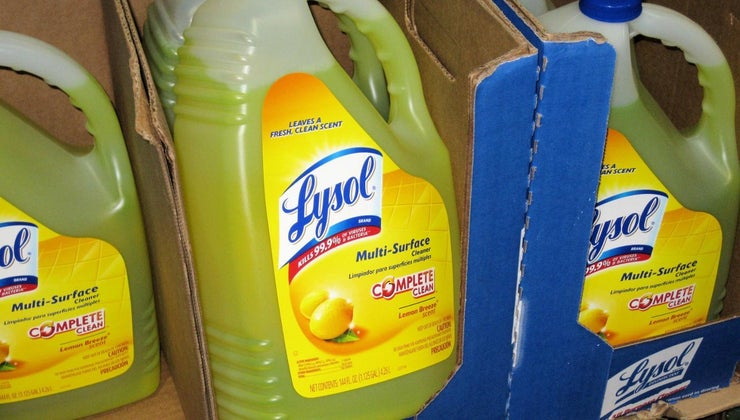 lysol-kill-ringworm
