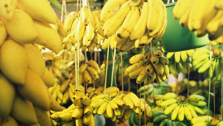 many-bananas-pound