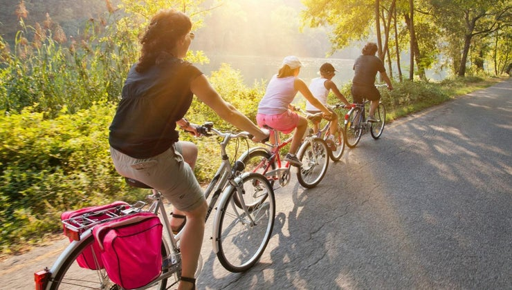 many-bicycles-world