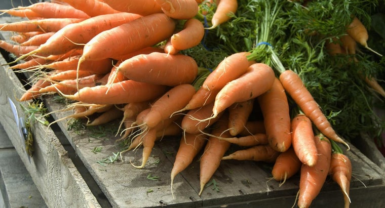 many-carrots-bunch