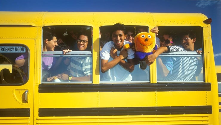 many-rows-seats-school-bus